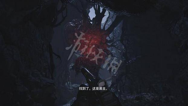《惡靈古堡8》菌主來歷介紹